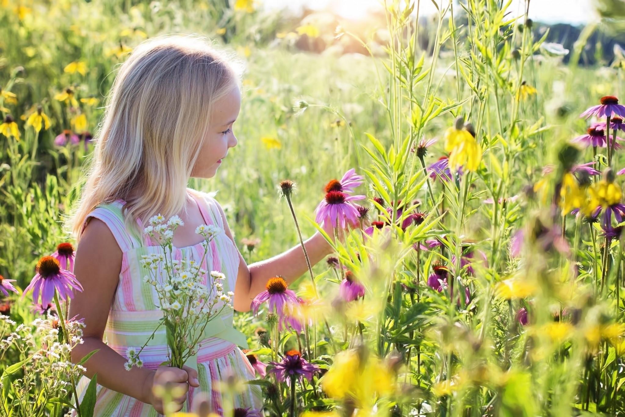 Kleines Mädchen im Sommer inmitten von Blumen