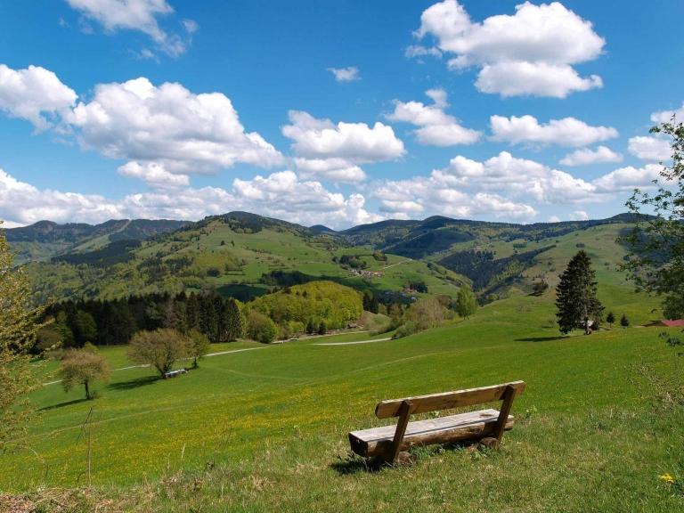 Holzbank und Panoramablick auf Schwarzwald
