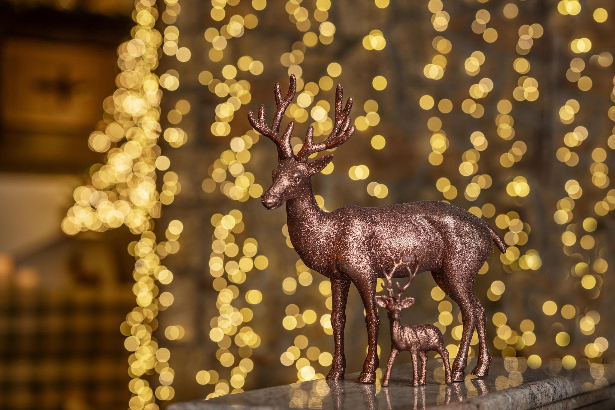 Weihnachtsdeko mit Hirschen vor Lichterteppich im Vier Jahreszeiten am Schluchsee