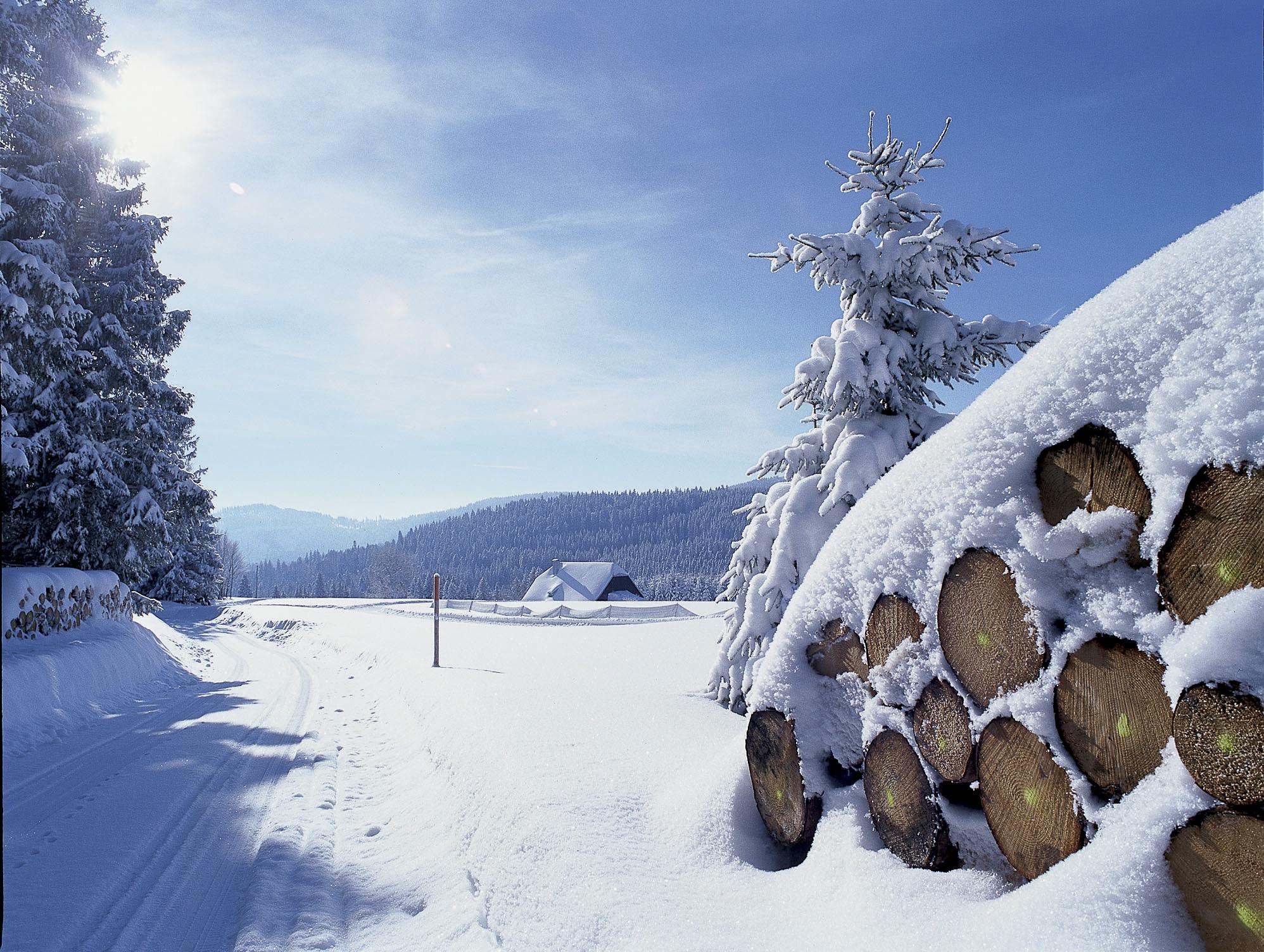 Winterlandschaft in Hinterzarten - ©HTG