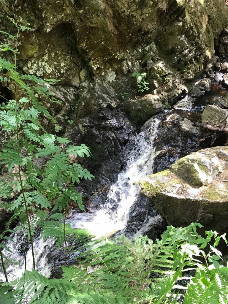 Schlucht beim Falkauer Wasserfall