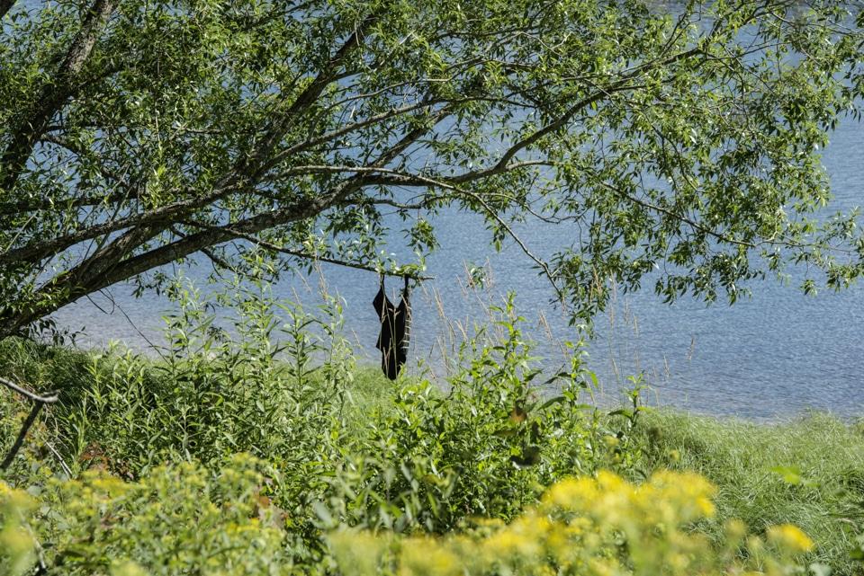 Badeanzug, der an einem Ast am See hängt