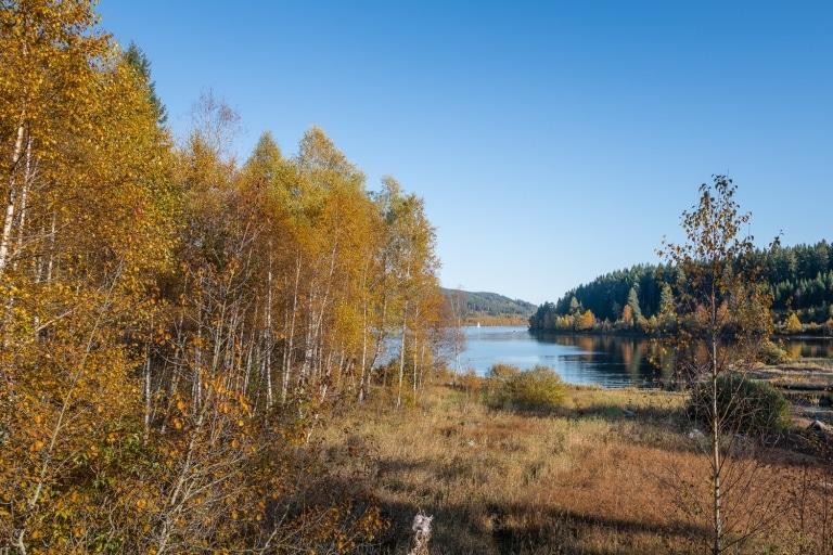 Ufer im Herbst mit See im Hintergrund
