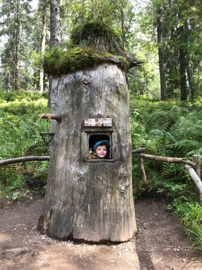 Kind schaut aus dem Baumstamm-Haus auf dem Wichtelpfad