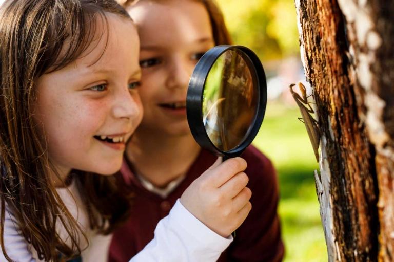 Kind mit Lupe vor einem Baum