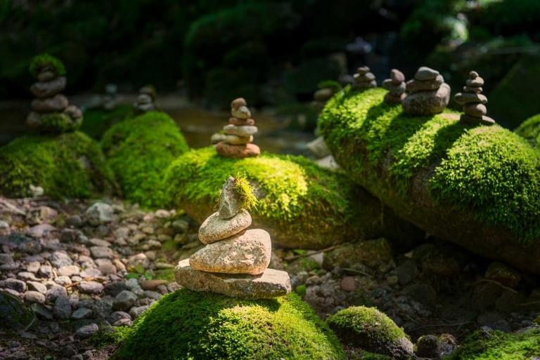 Steine auf vermoosten größeren Steinen